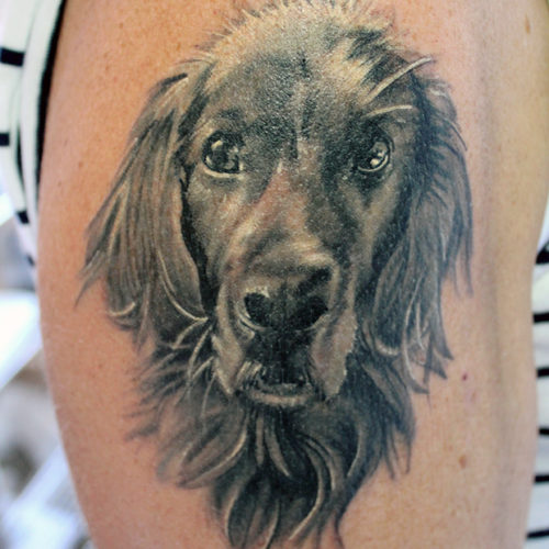 Carper Ink Dog Portrait Tattoo