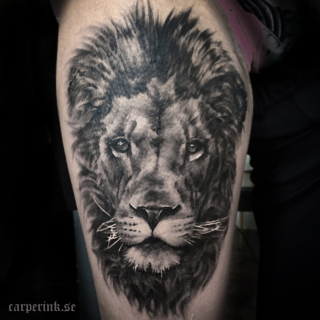 Carper Ink Black And Grey Lion Tattoo