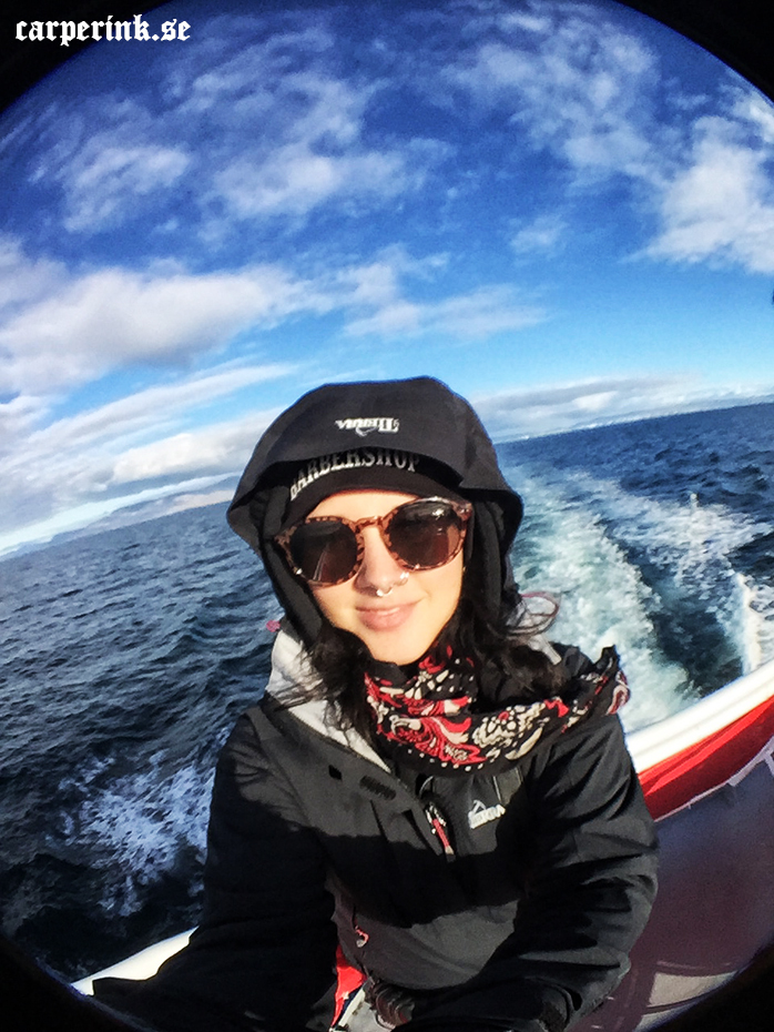 Carper Ink Iceland Whale Watching