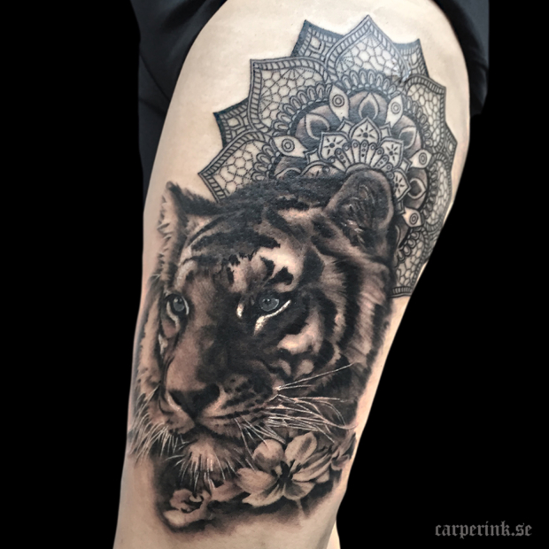 Carper Ink Big Tiger Mandala Tattoo