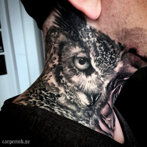 Carper Ink Healed Owl Tattoo